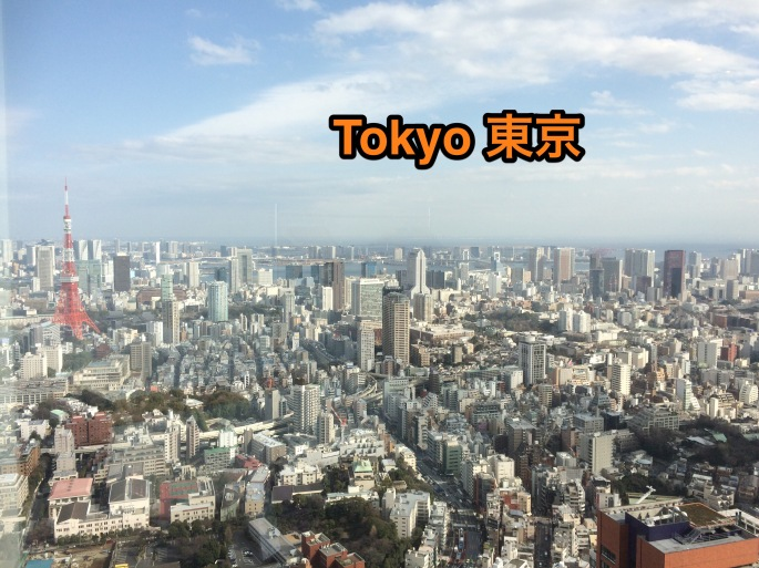 Tokyo from quite high up